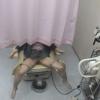 美脚の女子大生アキさん(20) ~内診台診察(前半)~ 婦人科診察のすべて File03-b